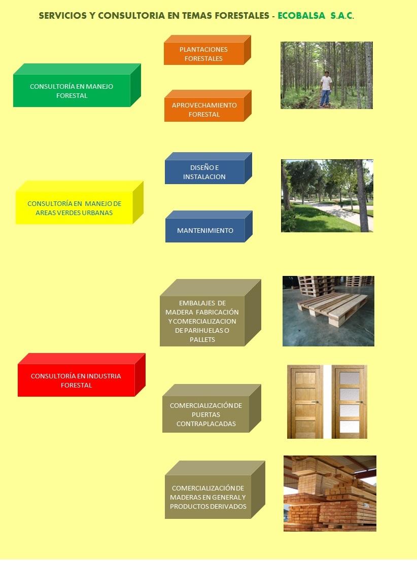 Servicios de consultoria forestal for Manejo de viveros forestales